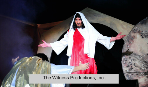 Witness Production Program